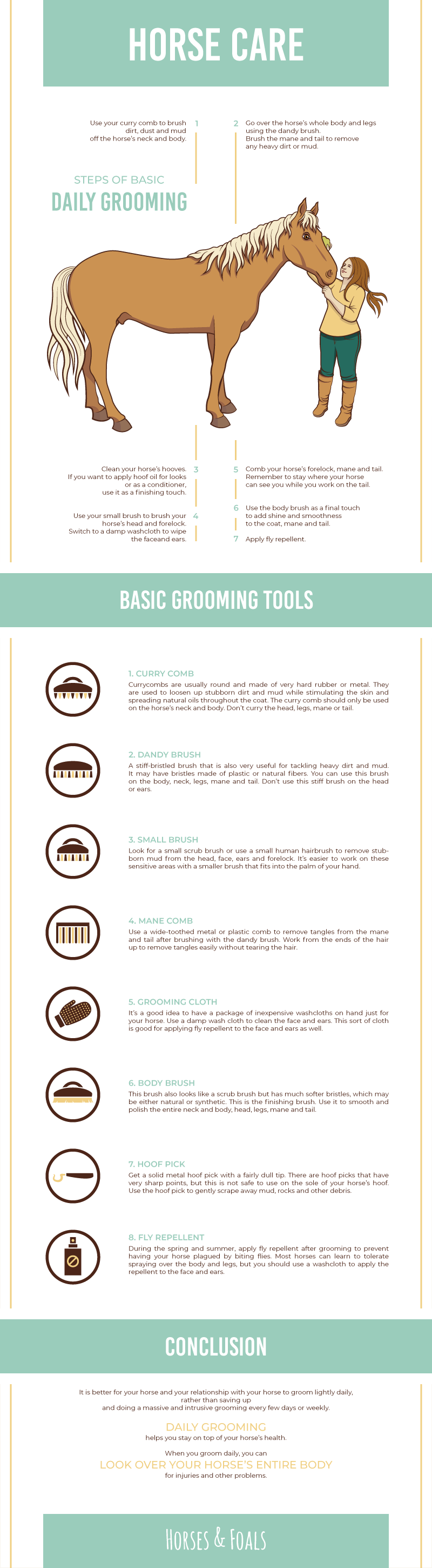 basic daily grooming tips
