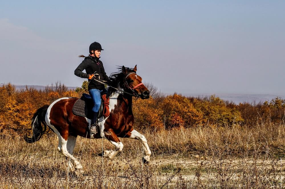 riding activates various muscles