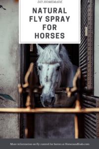 Homemade Natural Fly Spray For Horses