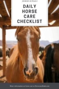 periodic horse task list