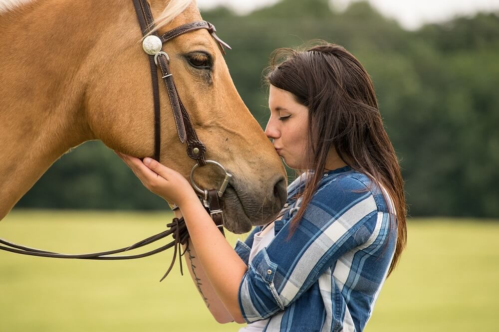 Teaching your horse to soften to the bit