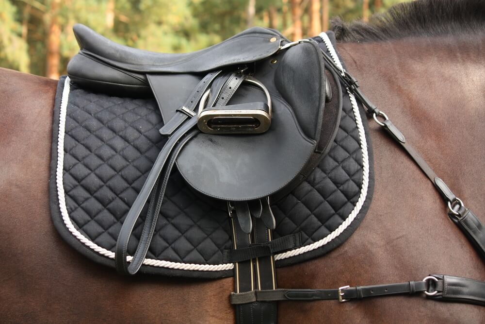 best saddle pad reviews