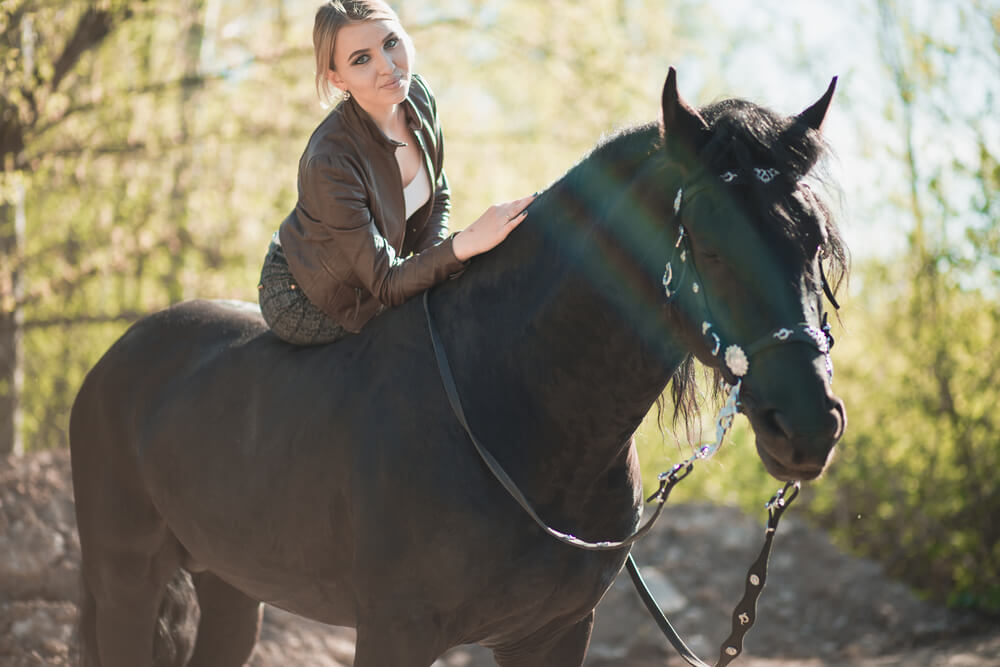 Top 5 Best Bitless Bridles for a Horse [2020 Reviews ...