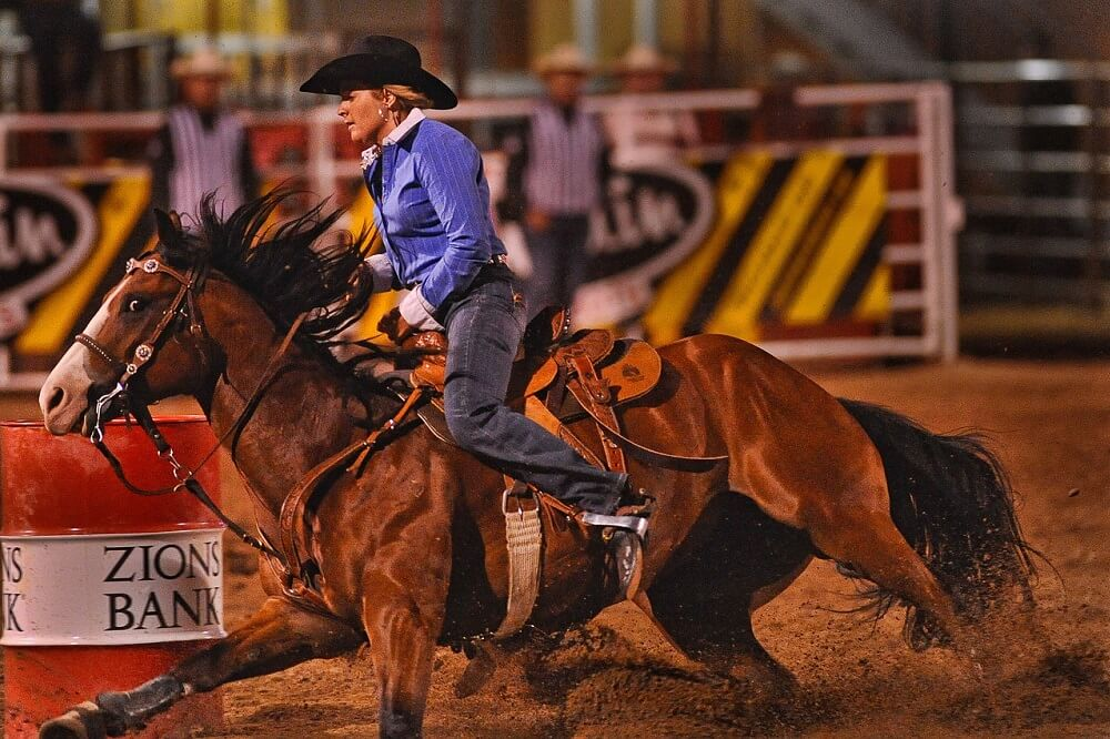 best barrel racing horse