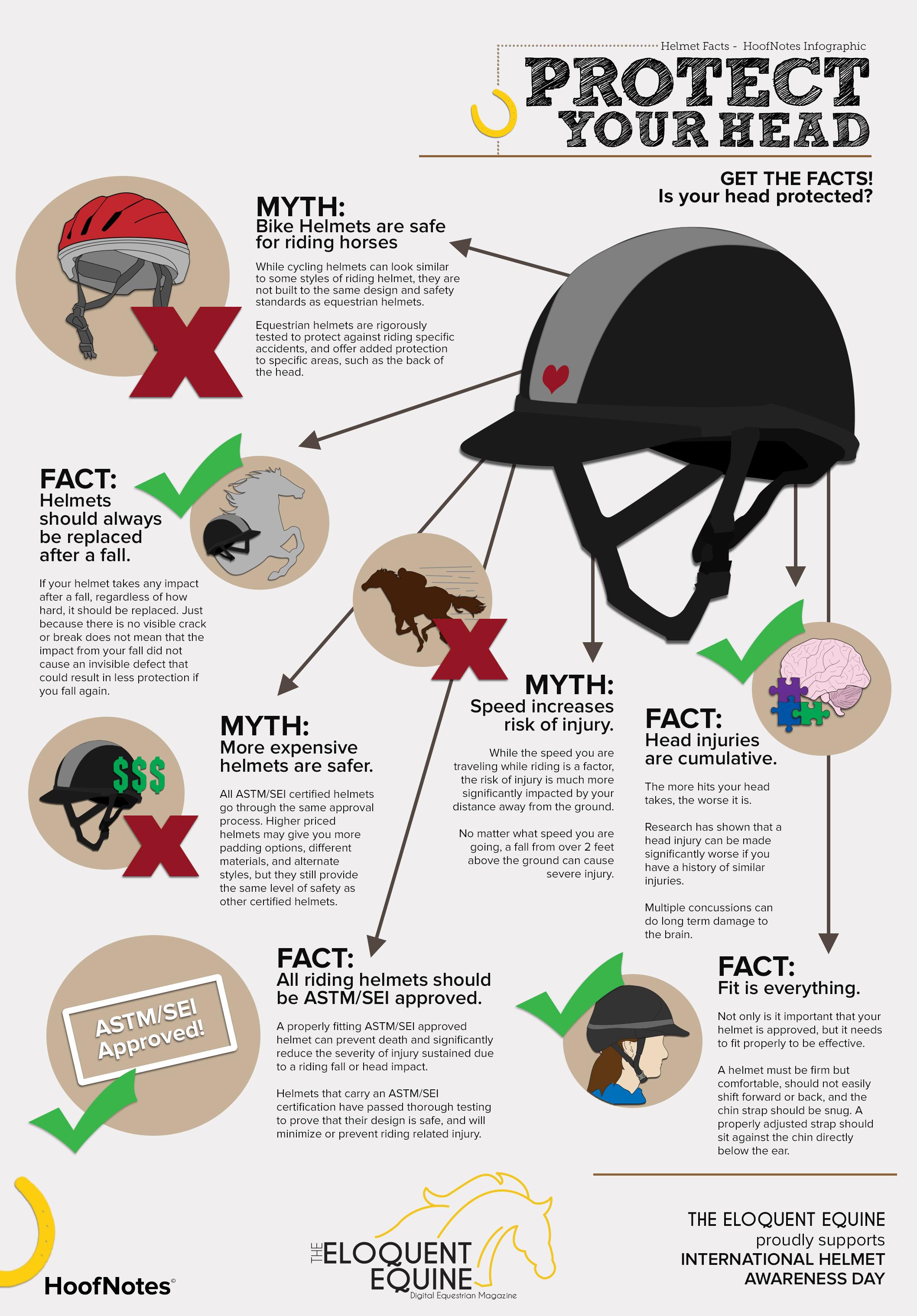 best equestrian helmet infographic
