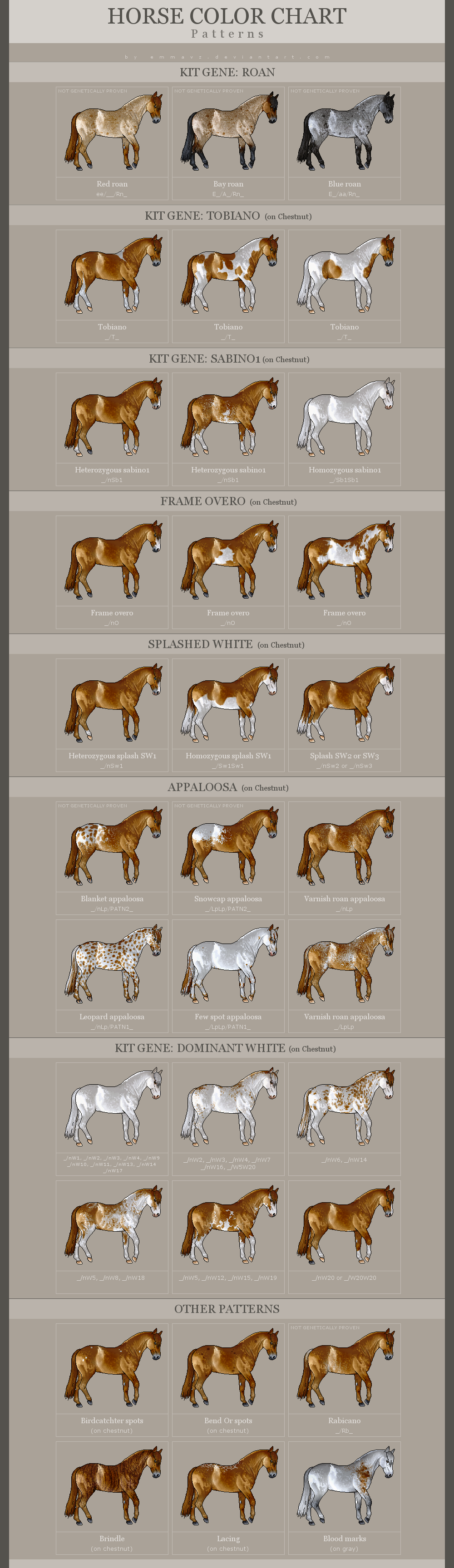 horse color patterns
