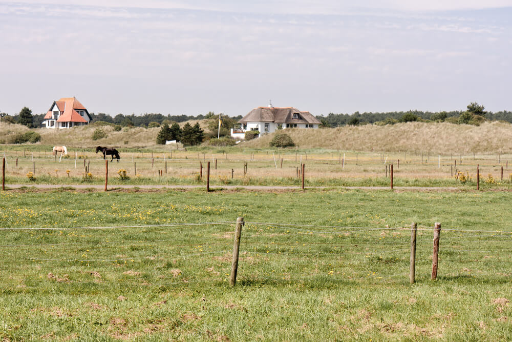 are herbicides safe for horses