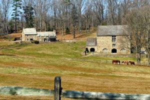 horse barn safety rules