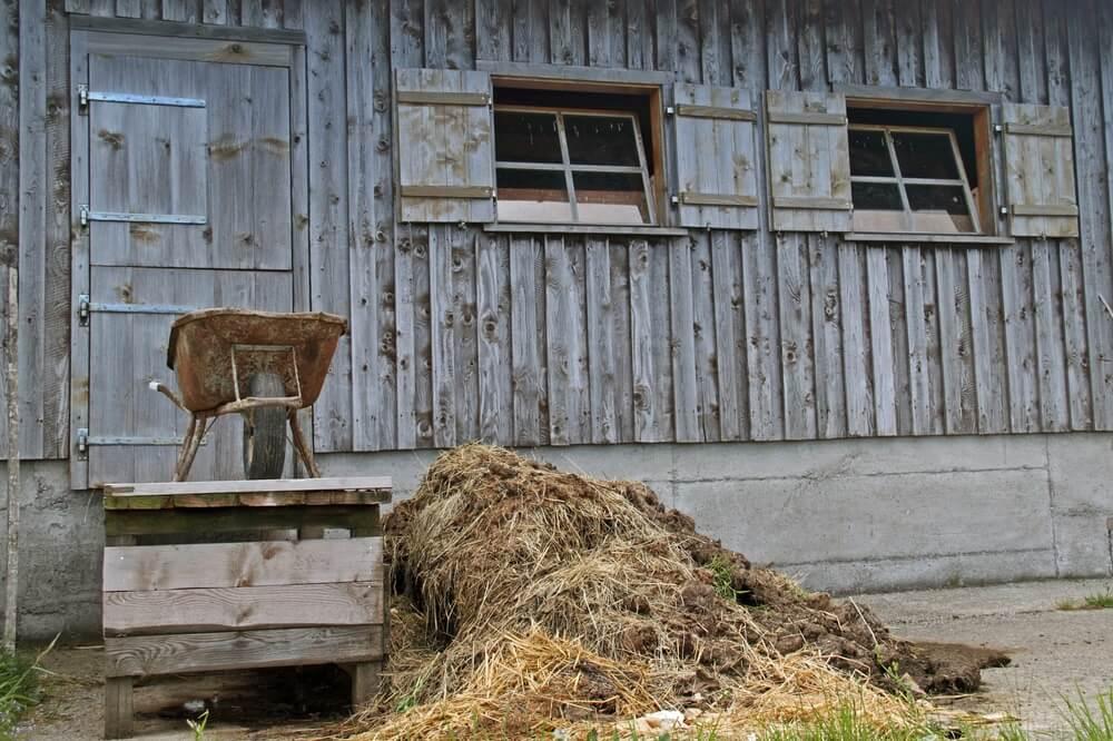 best wheelbarrow for horse manure
