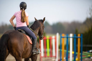 fun things to do with your horse while riding