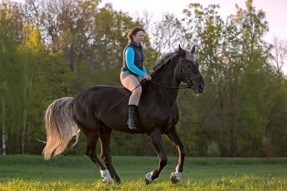 where should your legs be when riding a horse