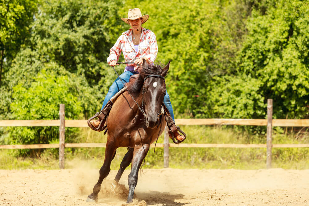 Barrel Horse Training Exercises