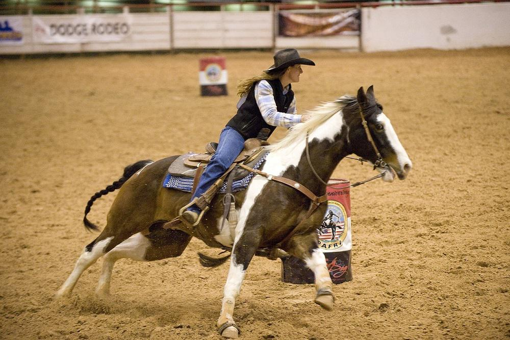Ten Popular Riding Disciplines