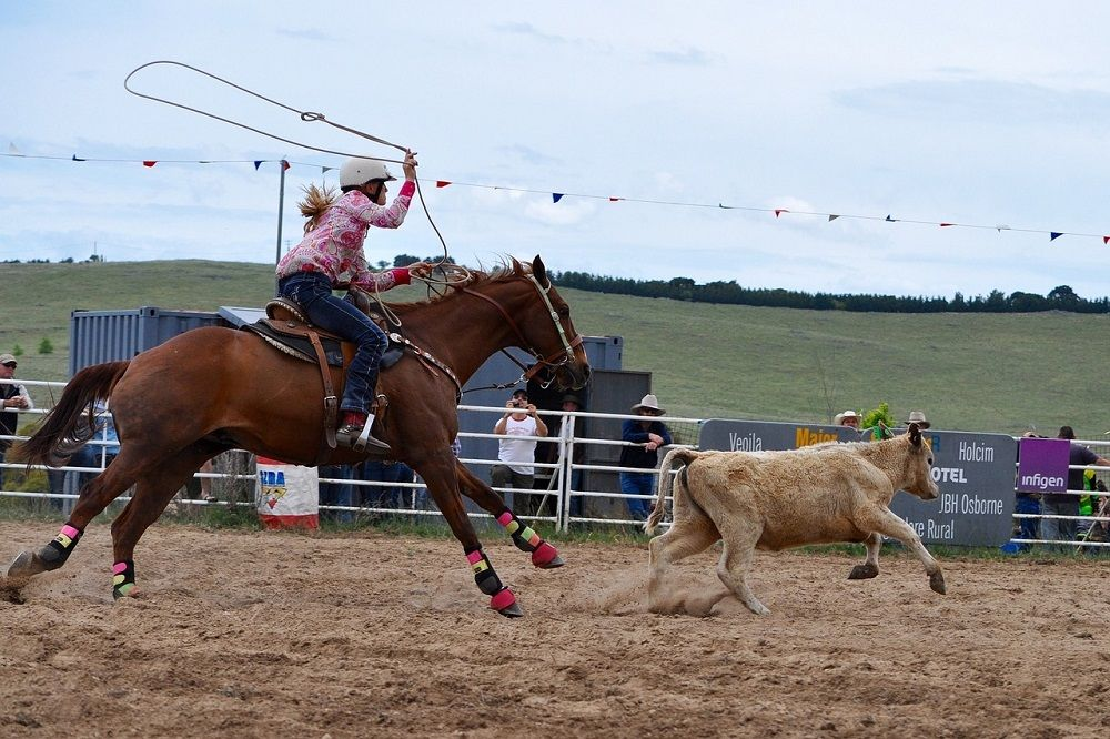 How Is Rodeo Calf Roping Different