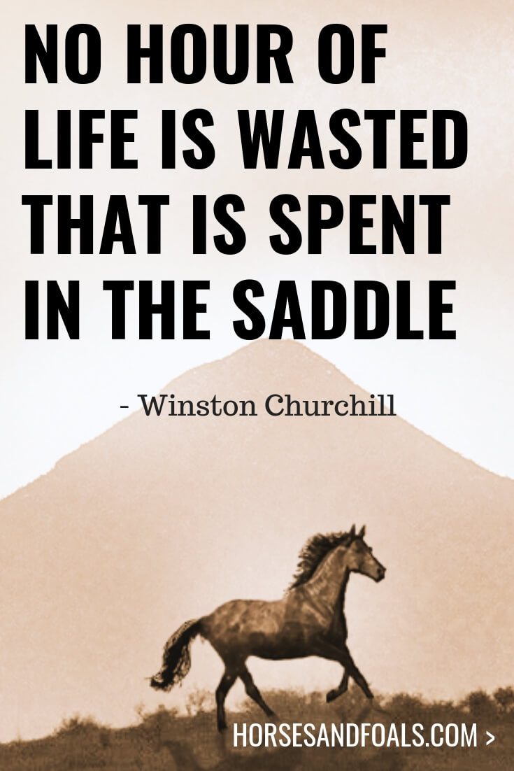 """No hour of life is wasted that is spent in the saddle"" - Winston Churchill"