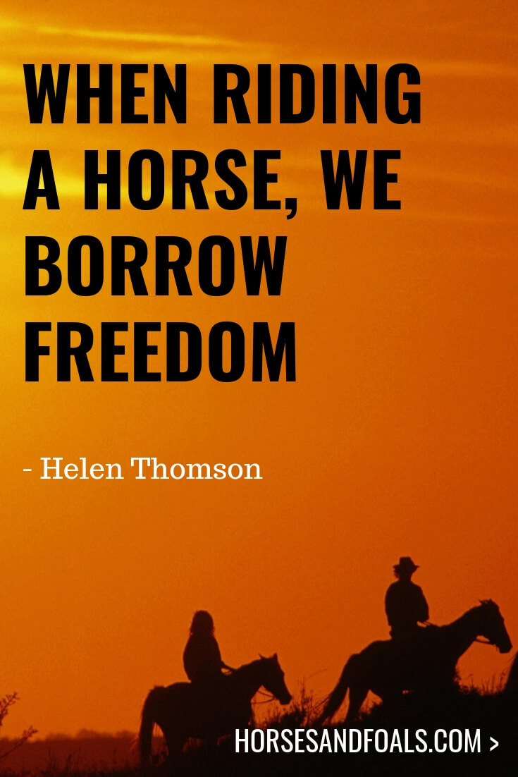 When riding a horse, we borrow freedom