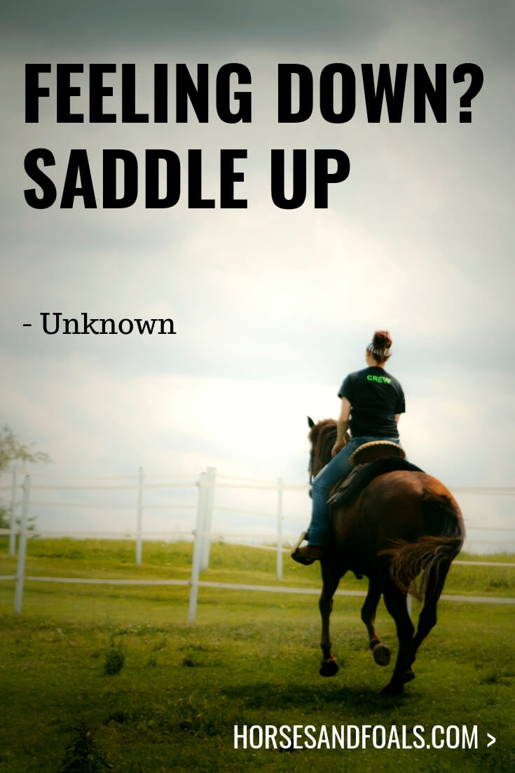 Feeling down? Saddle up