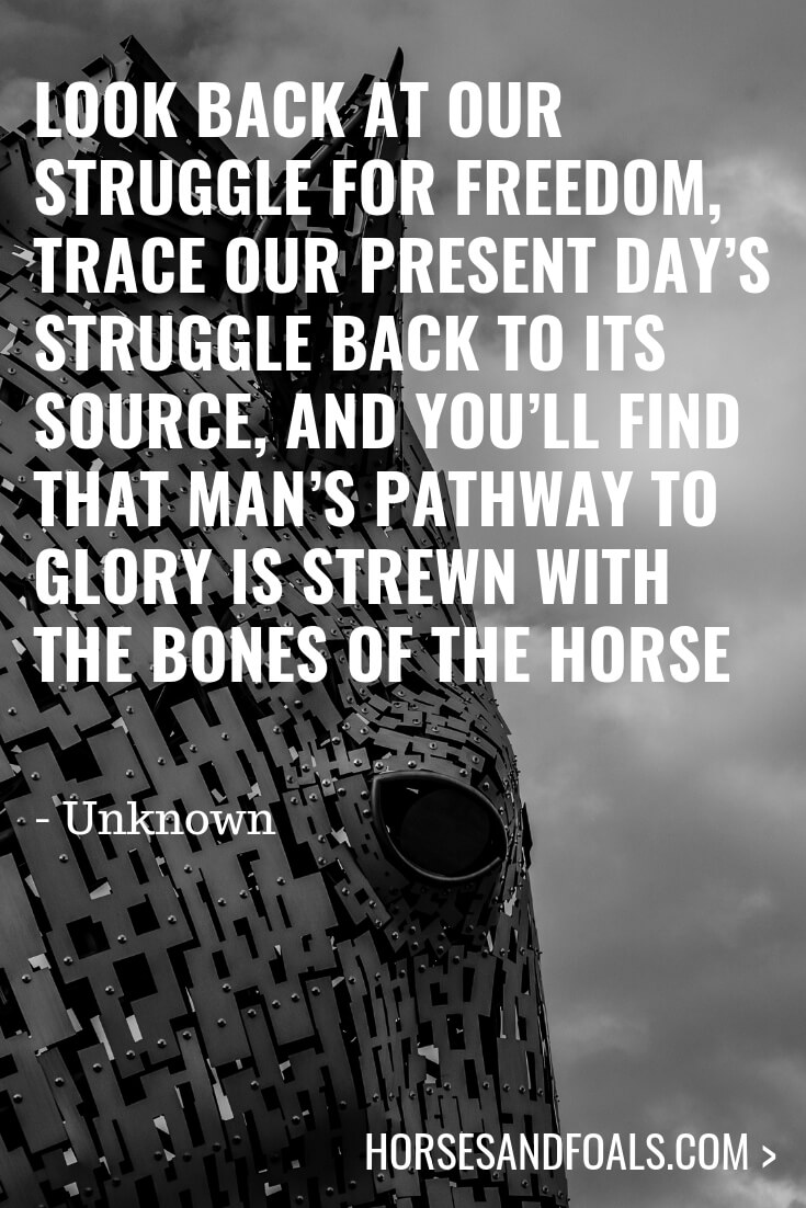Look back at our struggle for freedom, trace our present day's struggle back to its source, and you'll find that man's pathway to glory is strewn with the bones of the horse
