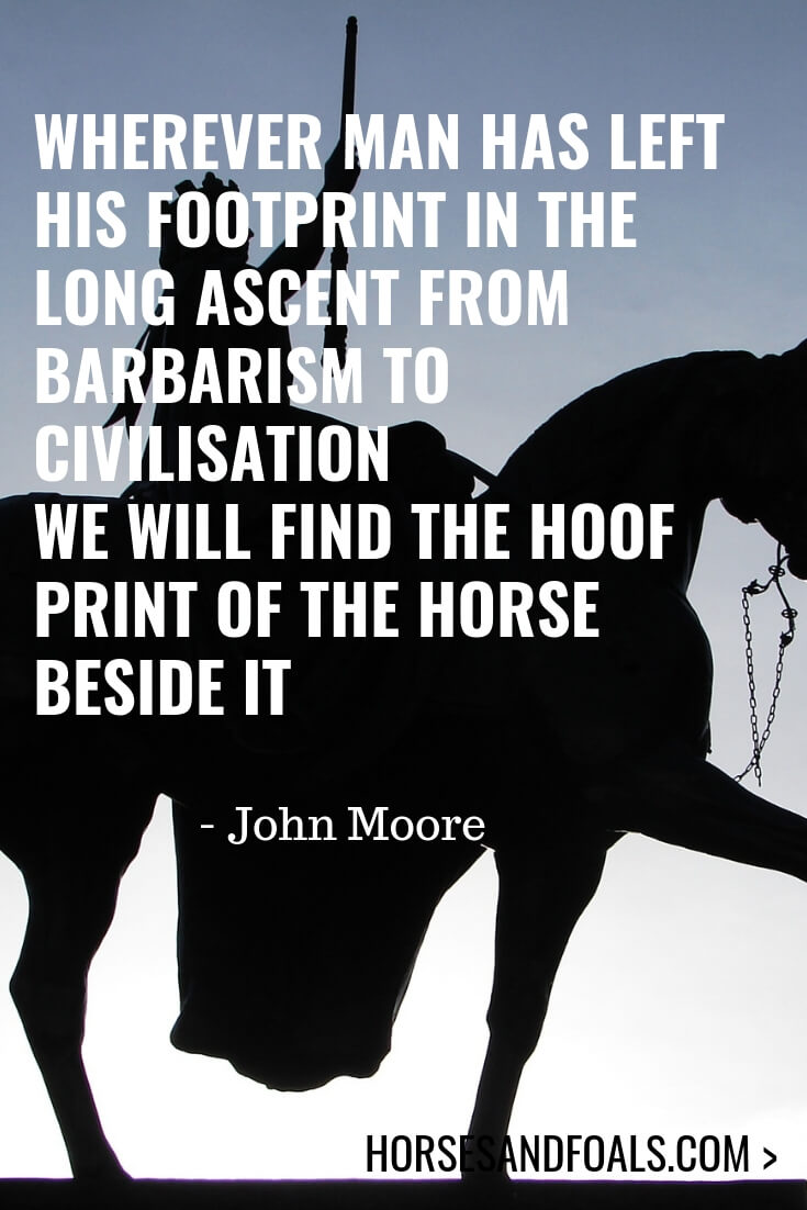 Wherever man has left his footprint in the long ascent from barbarism to civilisation we will find the hoof print of the horse beside it