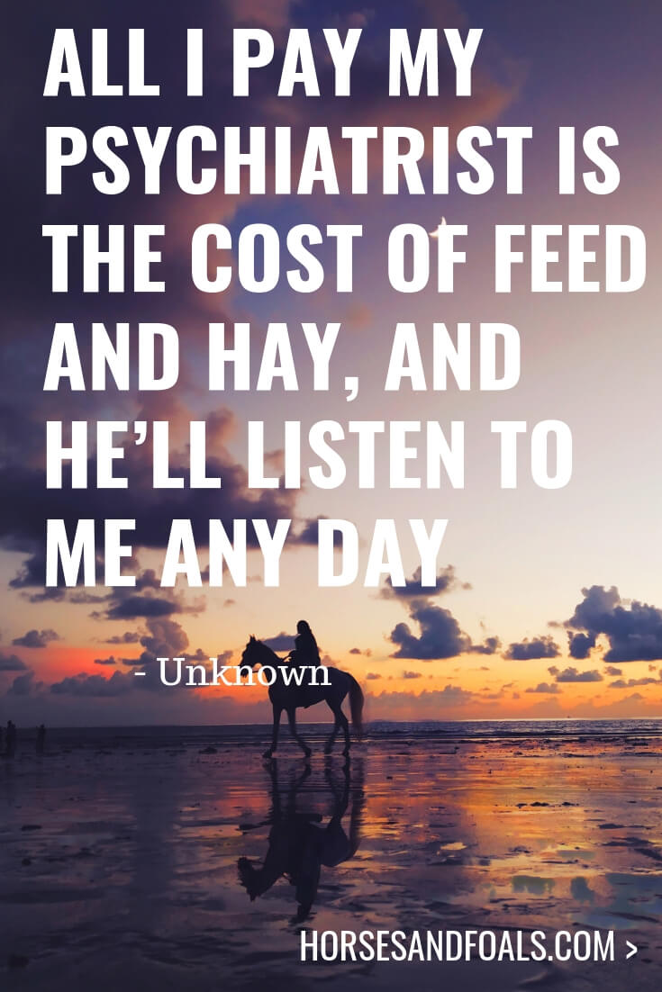 All I pay my psychiatrist is the cost of feed and hay, and he'll listen to me any day