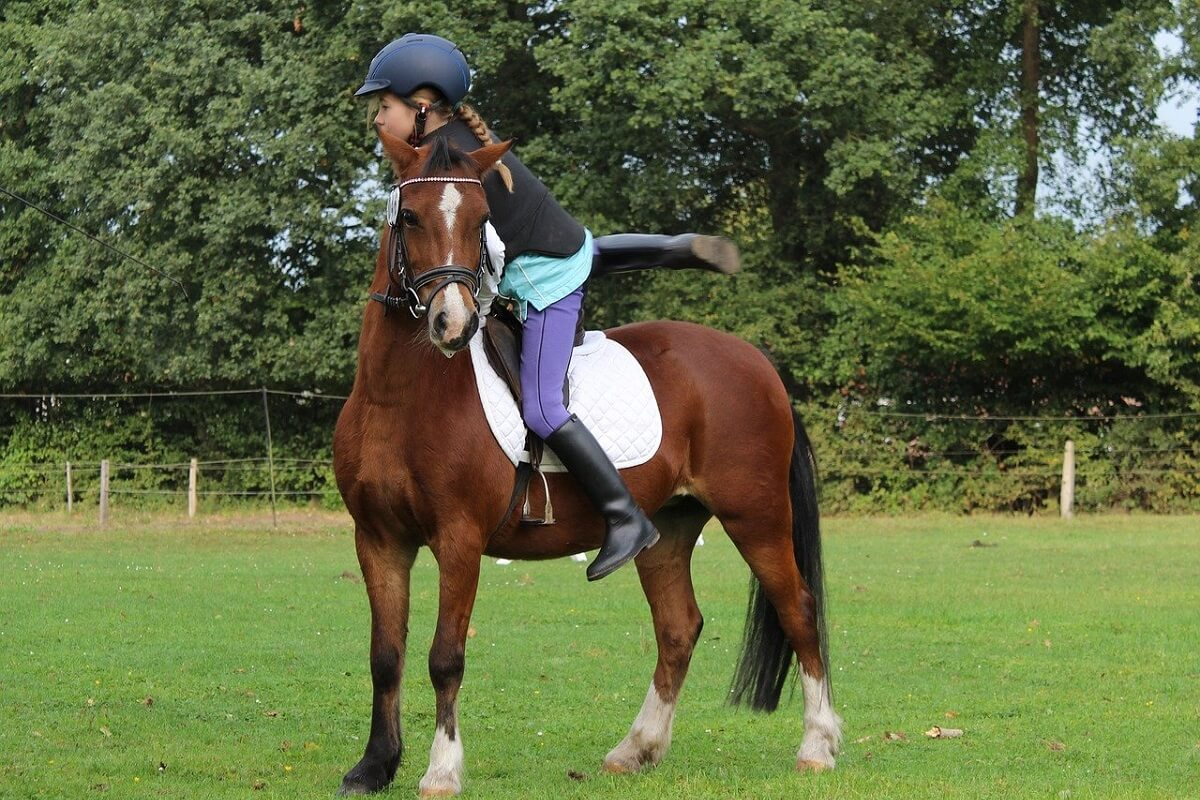how to start pony racing