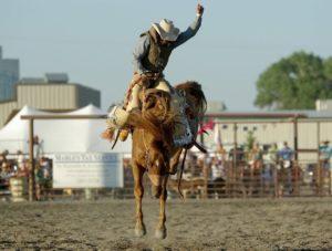 rodeo terms explained