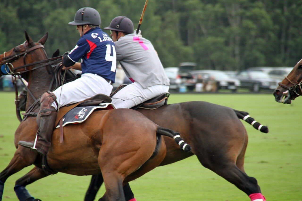 Basic Rules Of Polo