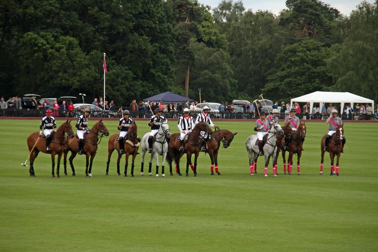 History Of Horse Polo