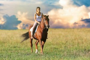 how do I build my horse's topline